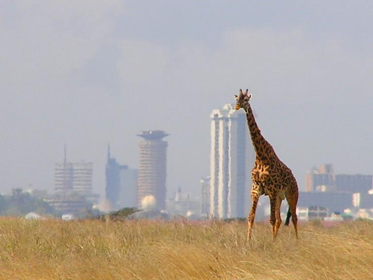 9 Reasons Why You Should Include Kenya in Your Next Holiday Plans